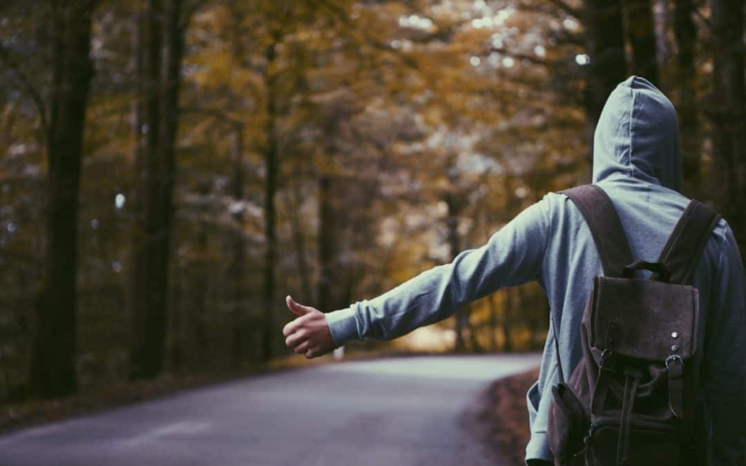 Hitchhiking: Myths, Facts and Beyond