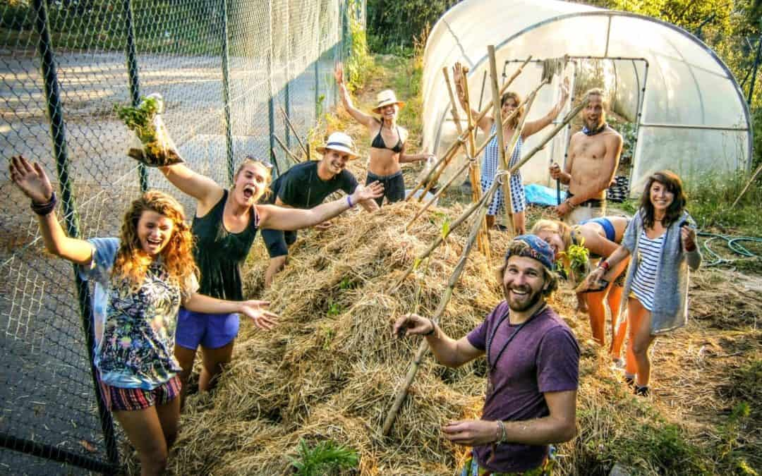 Travel Legends Series: The Story of WWOOF – An Interview With Founder Sue Coppard